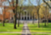 College campus in the spring.jpg