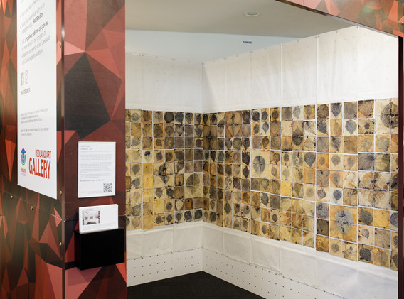 Installation view, photo by John Downs