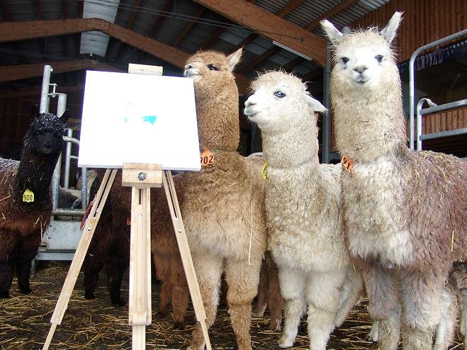 Alpakas Malerei der Tiere