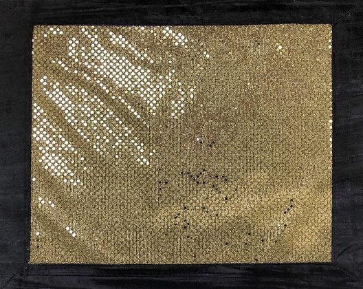 Gold sequins, black velvet border