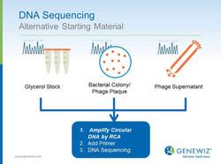 DNA Sequencing Slide Design