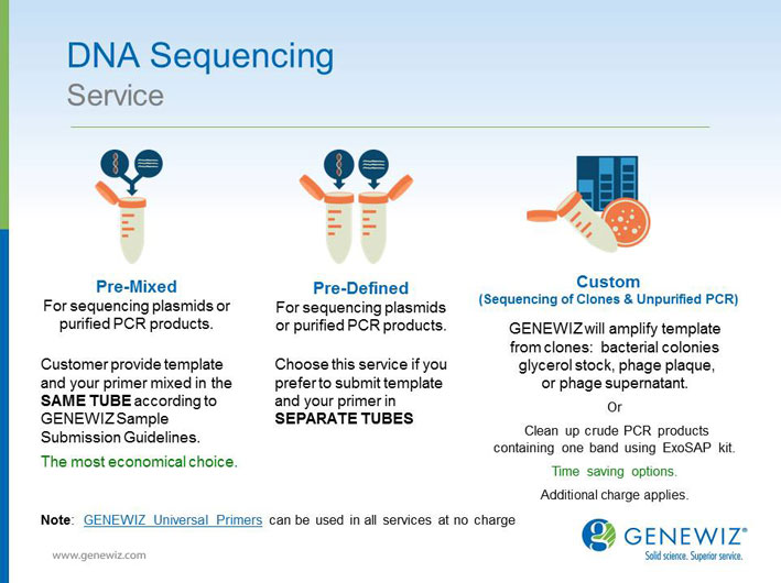 DNA Sequencing Slide Design