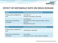 Drug Dosge Presentation Slide