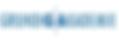 grundig_logo.png