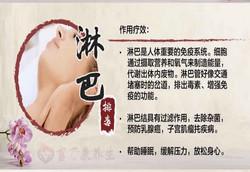 淋巴排毒 华语580