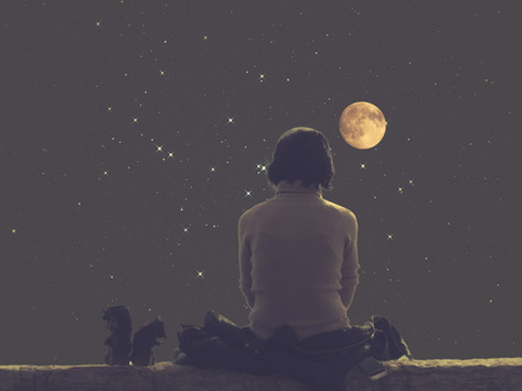 Harvesting Lunar Energy: Essential Monthly Rituals for Your Self & Your Space