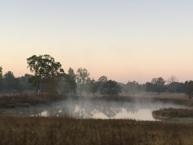 Morning mist rises