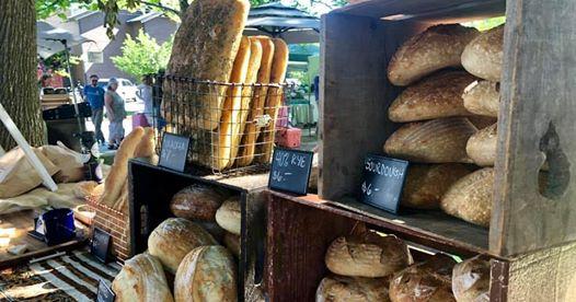 bluebird bakery