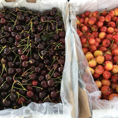 Mmm...Cherry season!