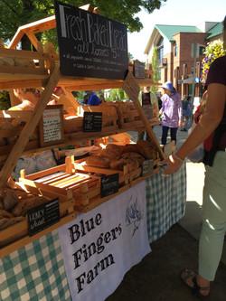 Blue Fingers Farm