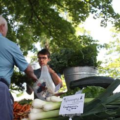 Ronniger's Organics