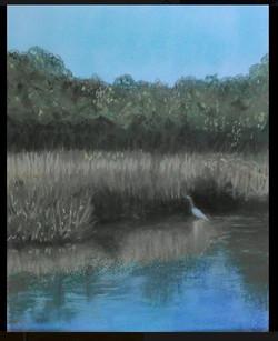 Edisto crane in the marsh