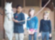 horse lessons, children, horse, learning, horse grooming, los angeles, equestrian center, bennett farms, jim bennett, saddle seat, western, pony, ponies, horse care, laec, equestrian, equine,