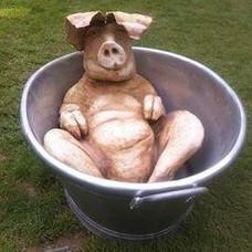 Hog Wash