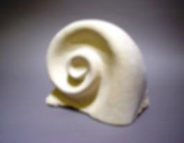 Shell-like - David Paynter