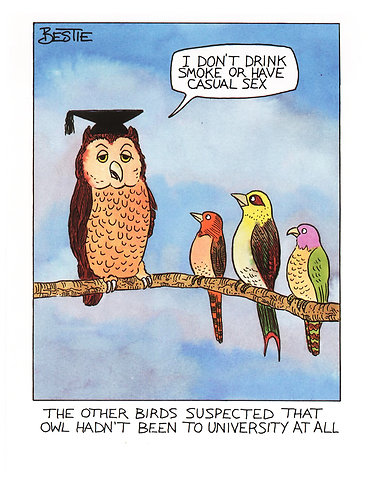 Suspect Owl