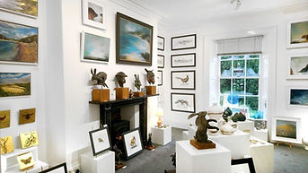 Tidal Gallery