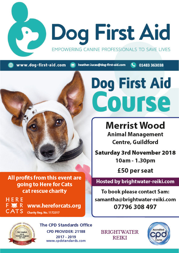 Dog First Aid Course