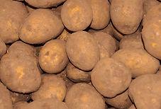 Seafare St.Johns - Potatoes