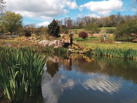 Surrey Hills Sculpture Trail Success