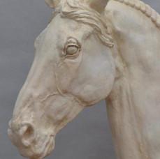 Horse Head V
