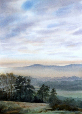 Surrey Hills, from Ranmore