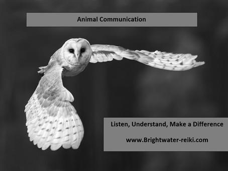 Listen, Understand, Make a Difference