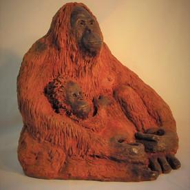 Support the Tapanuli Orangutan Project