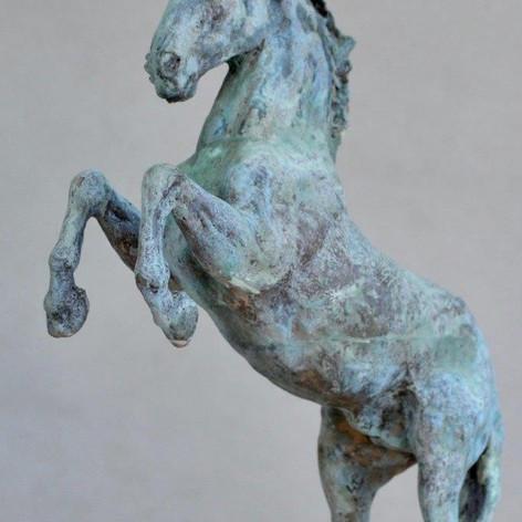 Rearing Spanish Horse