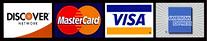Visa 100 x 20.png