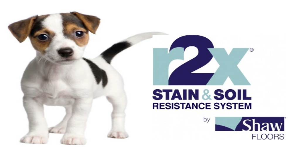 Shaw r2x stain and soil resistance picture.