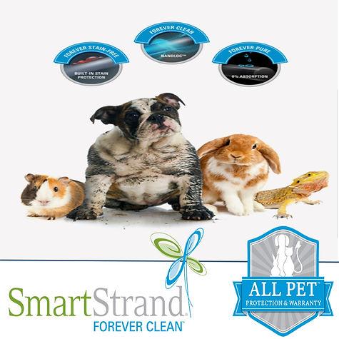 Smartstrand Forever Clean.jpeg