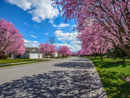5 Spring Home Maintenance Jobs You Can DIY
