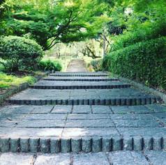 新緑、階段