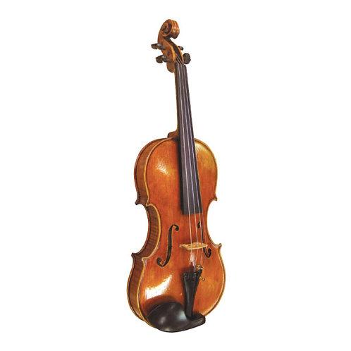 Ricci Violin