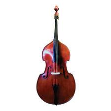 M.-Gugliano-Wilfer-Bass.jpg