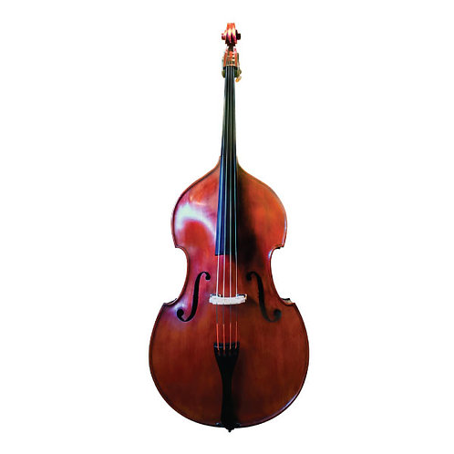 M. Gugliano Wilfer Bass