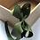 Thumbnail: Weeones - Medium Classic Grosgrain Bow on Headband