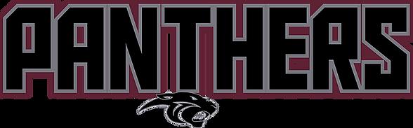18 Panthers Select Logo.png
