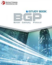 BGP_Rev01.png