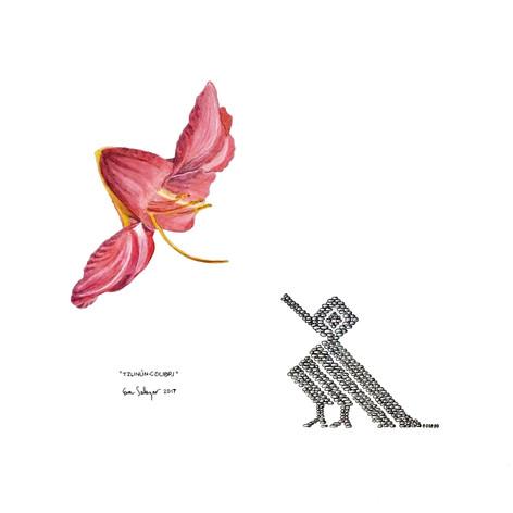 """""""Tzunún- colibrí"""""""
