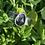 Thumbnail: Moss Green Quartz Ring