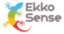 ekkosense logo transparent.png