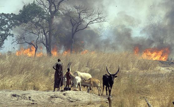Sudan fire