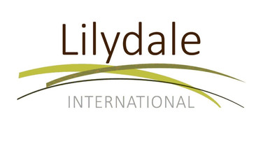 Lilydale International