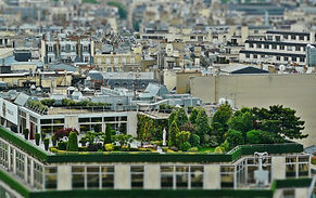 Terrasse -  Rooftop