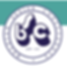 logo BSC.png