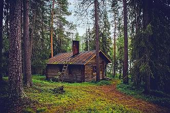 log-cabin-1886620_1920.jpg