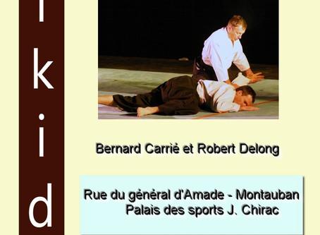 Prochaine rencontre Aïkido Montauban - Saint Lizier