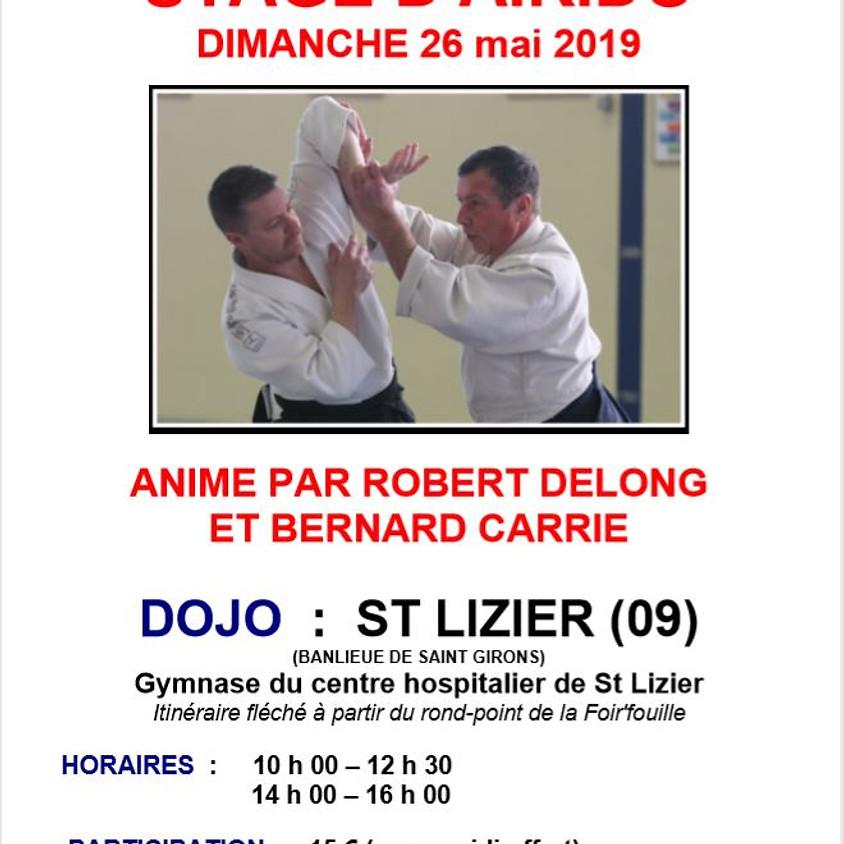 Rencontre aïkido Saint Lizier-Montauban